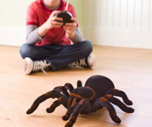 remote-control-tarantula
