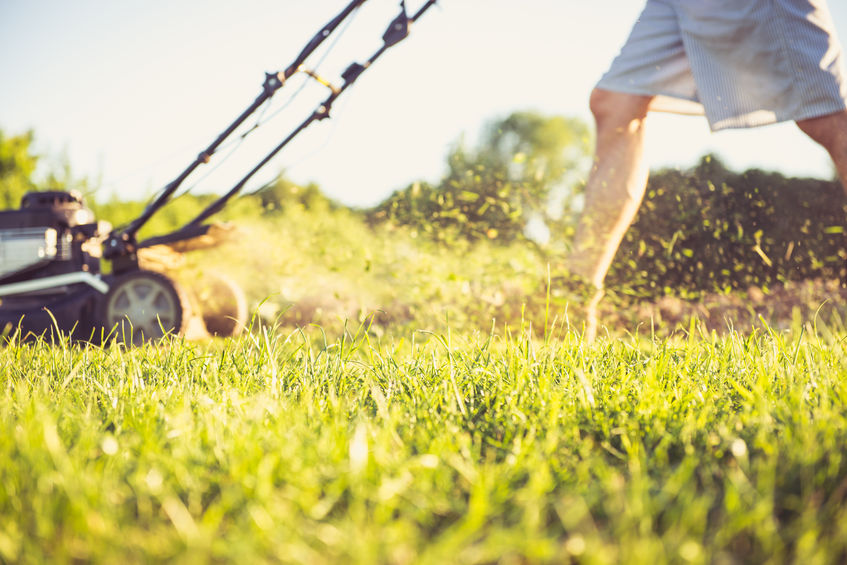 Steinbrunner Lawn Mowing Service